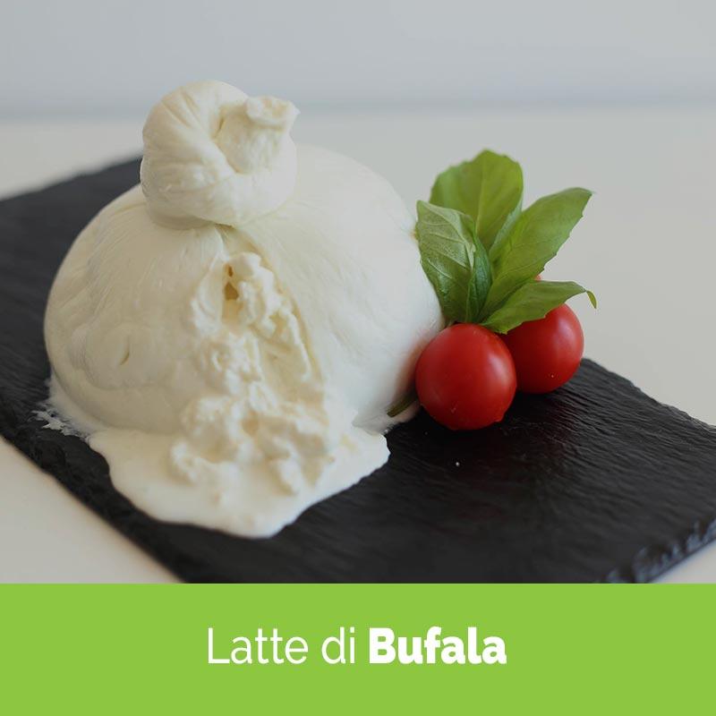 Prodotti caseari - mozzarella di latte di bufala - Caseificio San Leoanrdo - Salerno - Campania